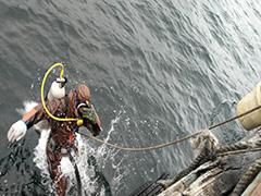 海底物探工程